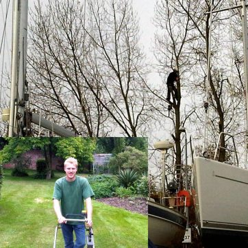 Professional Experts, from Tree Surgeons to Horticulture