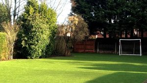 Fake/Artificial Grass Lawn in a Romsey Garden