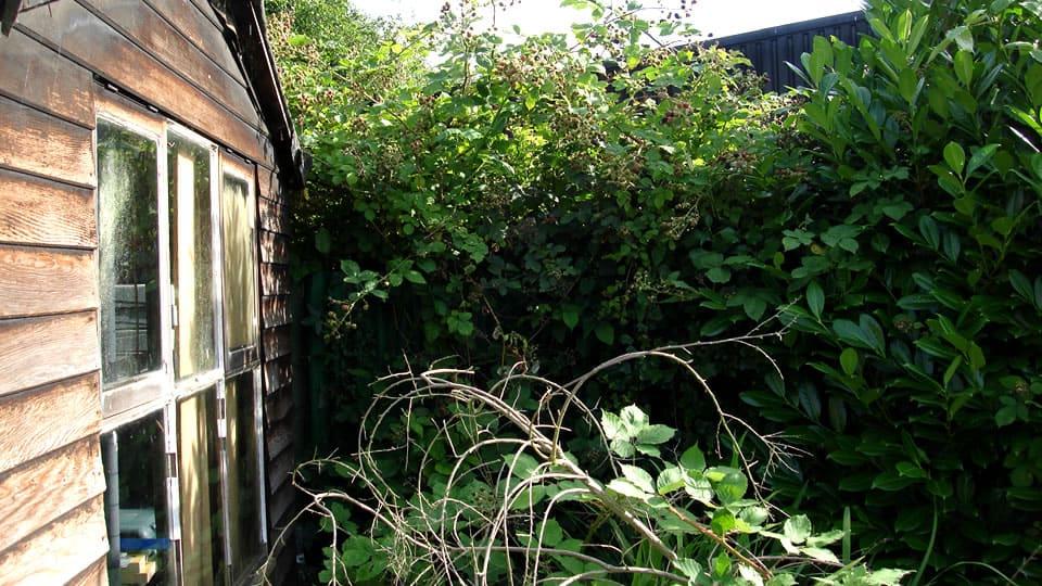 Garden Clearance Service