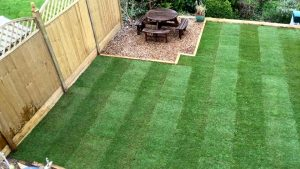 Grass, Lawns & Turfing