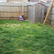 Garden Design Before