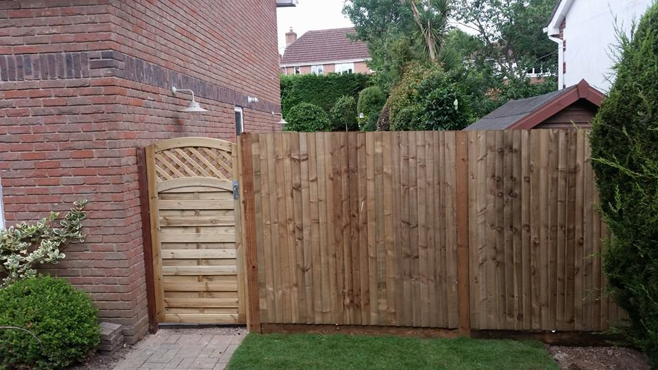 Closeboard fencing with continental gate as part of our Whiteley Garden Project