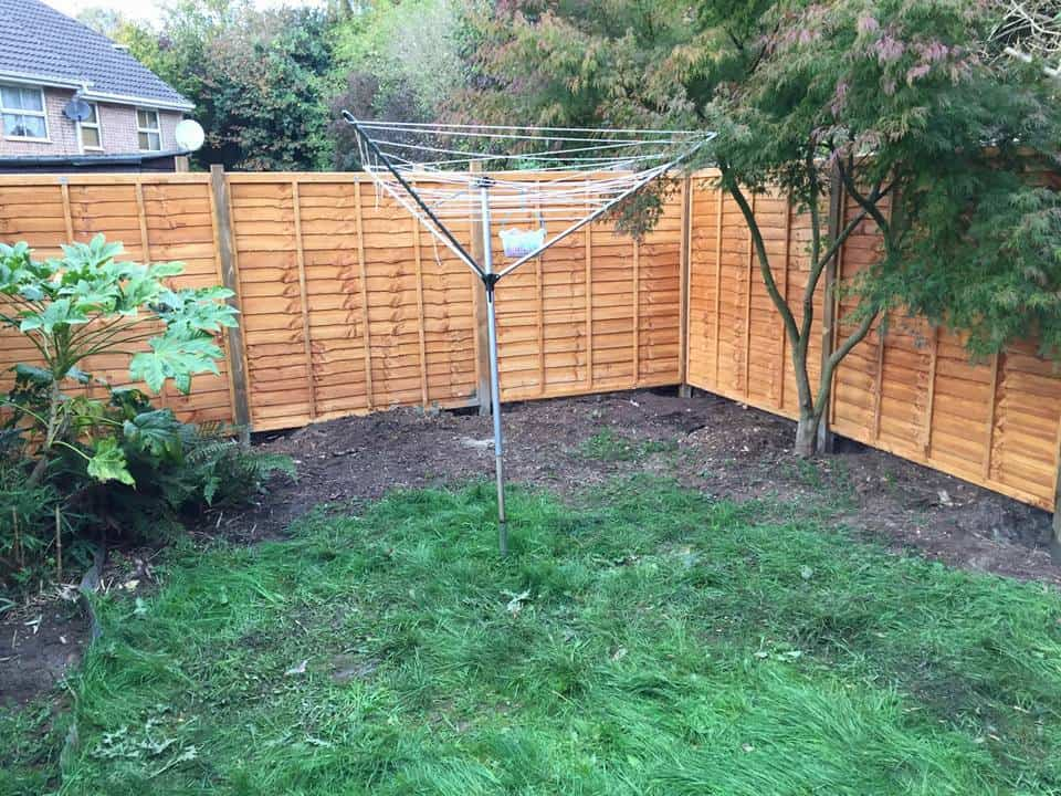 Aureum Low Maintenance Garden Redesign
