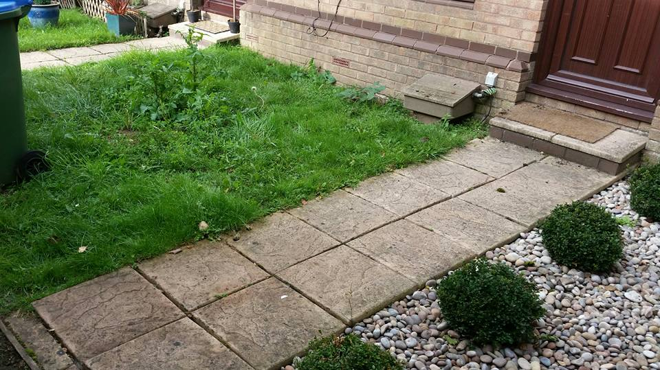Aureum Front Garden Before